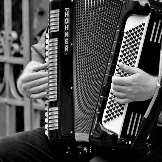 Corso di Fisarmonica alla Scuola di Musica e Teatro Antonio Salieri Caselle di Sommacampagna Verona