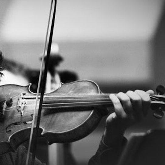 Corso di Violino e Viola alla Scuola di Musica e Teatro Antonio Salieri Caselle di Sommacampagna Verona